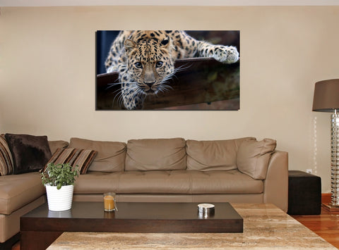 canik23 Canvas Print Stretched Wrapped Africa leopard predator Animal 26x48""