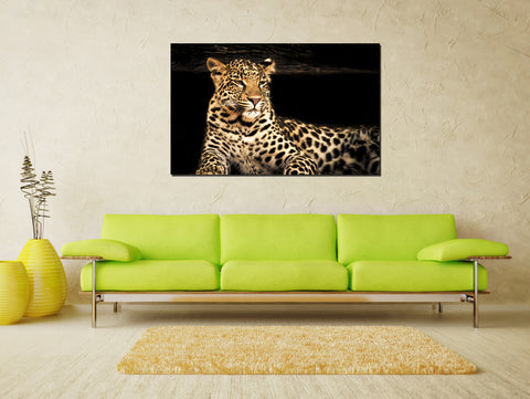 canik35 Canvas Print Stretched Wrapped leopard animal predator 26x43""