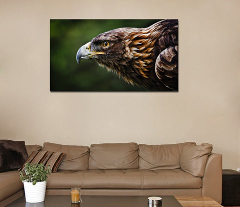 canik4 Canvas Print Stretched Wrapped an eagle bird wild 26x48""