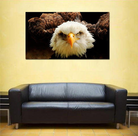 canik5 Canvas Print Stretched Wrapped an eagle bird wild 26x48""
