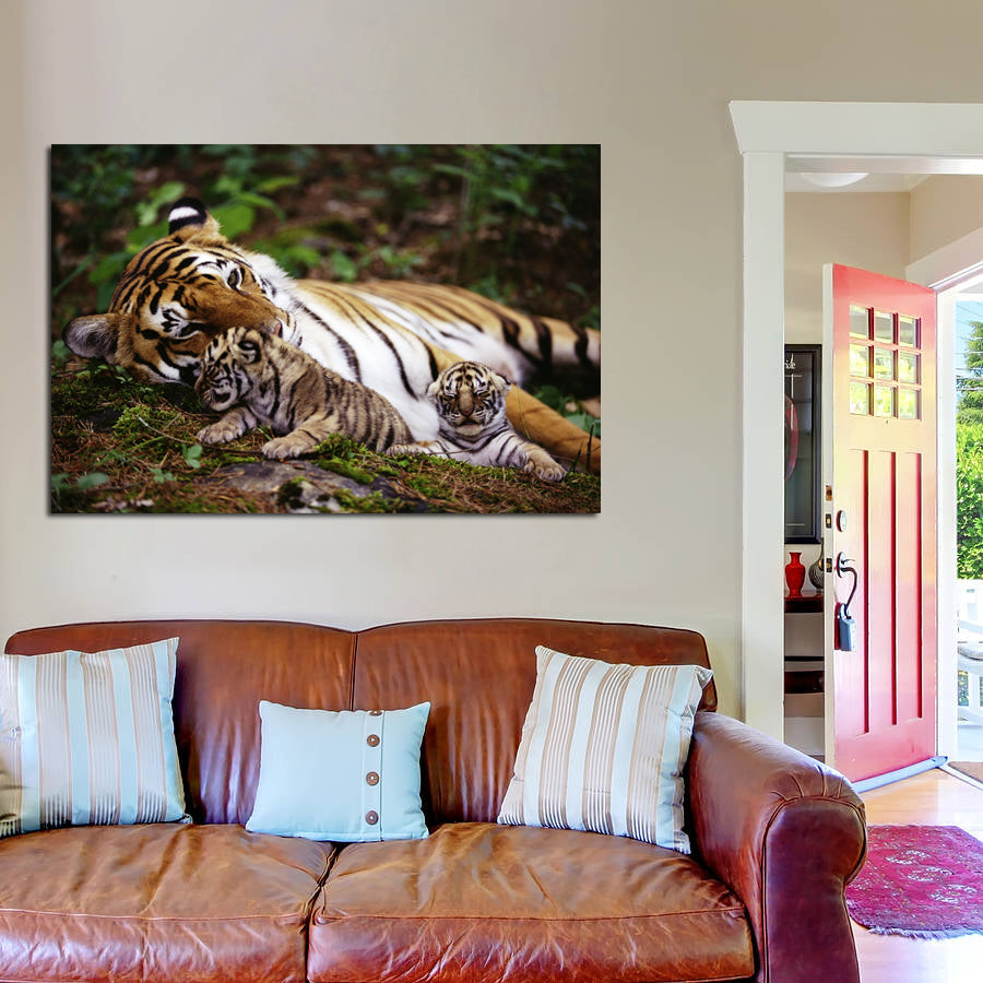 canik95 Canvas Print Stretched Wrapped family tigers cubs animals 26x40""
