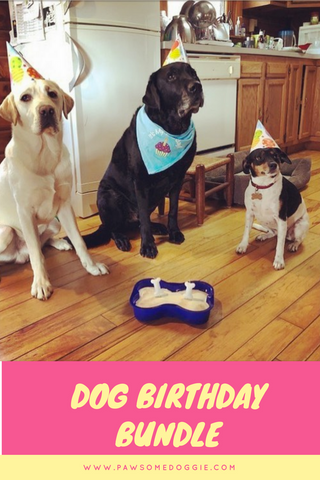 Puppy Party Birthday Bundle In A Box Pawsome Doggie