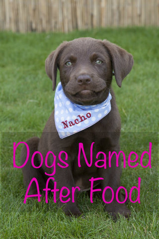 dogs named after food national dog day