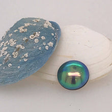 Load image into Gallery viewer, Raw Paua Pearl Grade B+