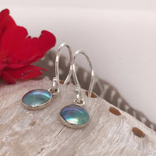 Load image into Gallery viewer, Teoteo Earrings