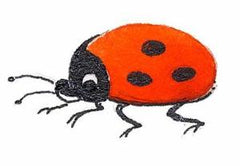Fairy Finery ladybug illustration