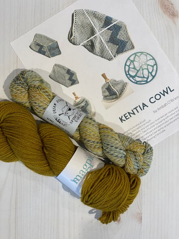 Kentia Cowl Kit 2:  Magpie Fibers Nest Worsted Strange Brew/Spincycle Dream State Deep Bump