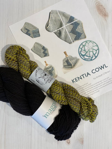 Kentia Cowl Kit 9:  Magpie Fibers Nest Worsted Midnight Sky/Spincycle Dream State Pussy Willow