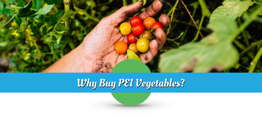 Why Buy PEI Vegetables? - How CSAs Benefit You And Your Community