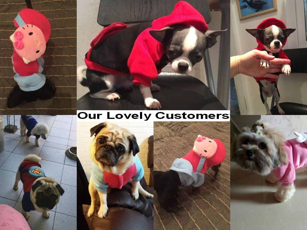 Cartoon Character Costume Suit for Pets - FOR MY LITTLE ANGELS