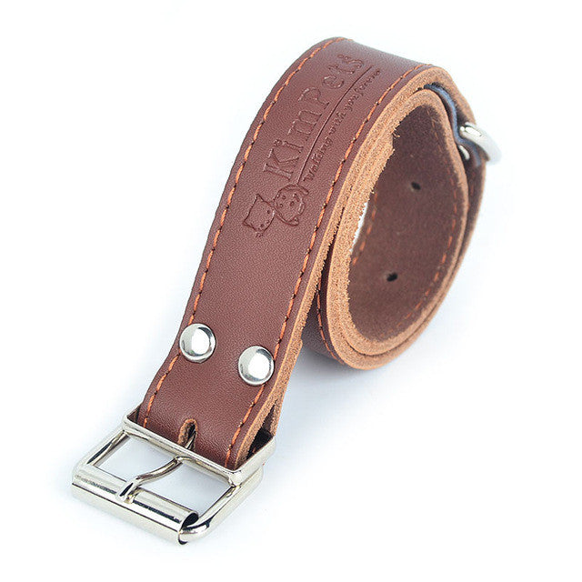 High Quality PU Leather Adjustable Pets Collar with Stainless Steel Buckle - FOR MY LITTLE ANGELS