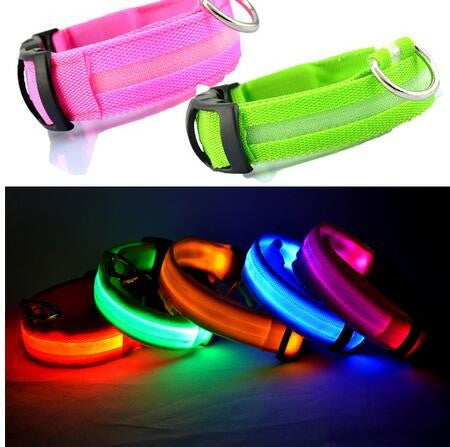 Nylon Pets Leash with LED Flashing Light Glow - FOR MY LITTLE ANGELS