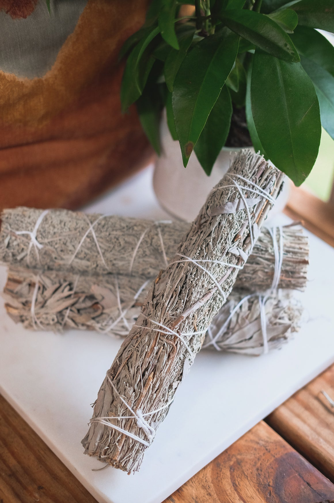 Blue Sage & White Sage Smudge Stick