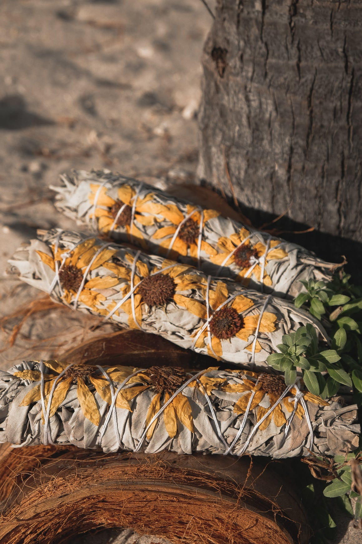 Sunflower & Sage Smudge Stick