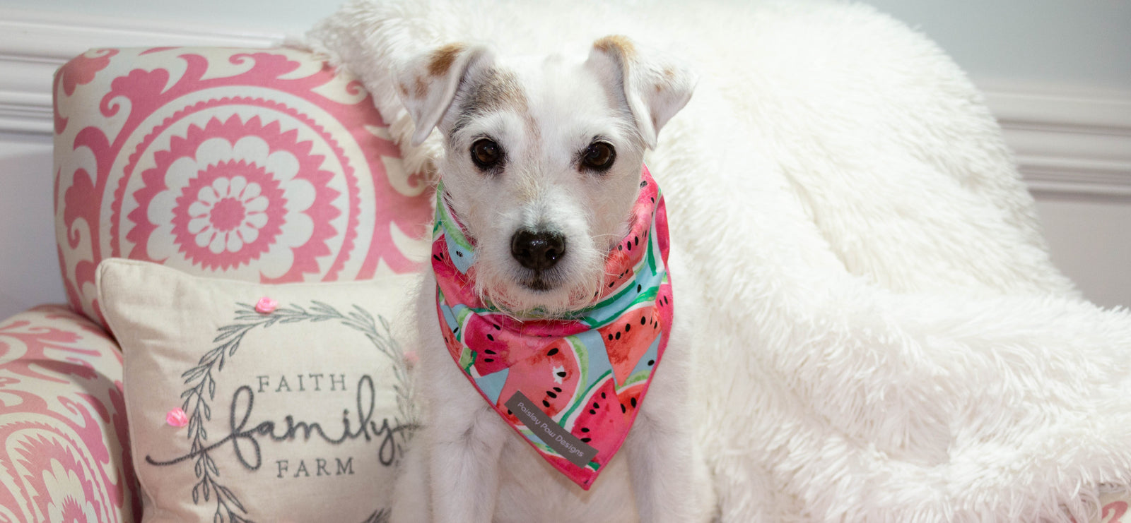 Paisley Paw Designs Traditional Tie On Bandanas