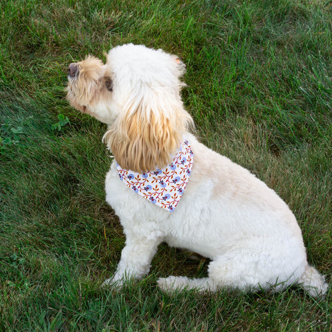 Berries on the Vine  Dog Bandana - Over the Collar Style in 5 Sizes | Free Ship - Hunter K9 Gear