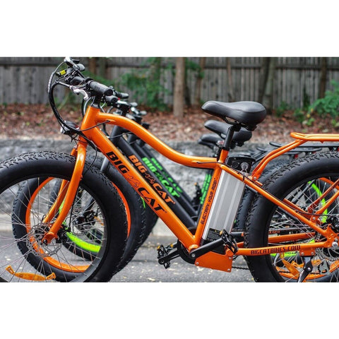 Big Cat Fat Cat XL500 48V 500W Electric Bicycle - Chargd Electric Bikes