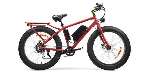 SSR Motorsports Sand Viper 48V 500W Fat Tire Electric Bike