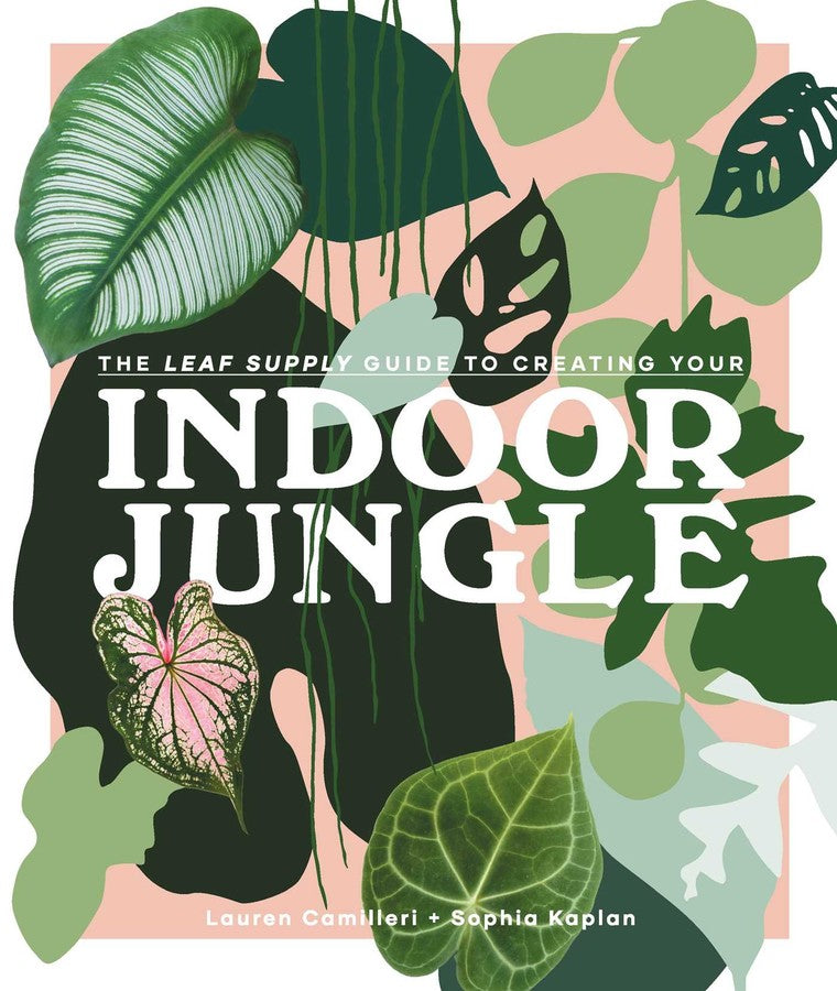 The Leaf Supply Guide to Creating Your Own Indoor Jungle