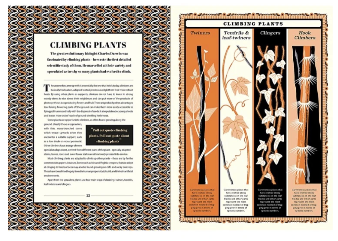 A World of Plants by James Brown and Martin Jenkins