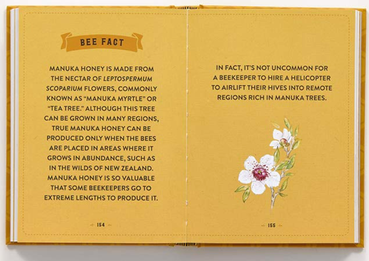 The Little Book of Bees by Hilary Kearney