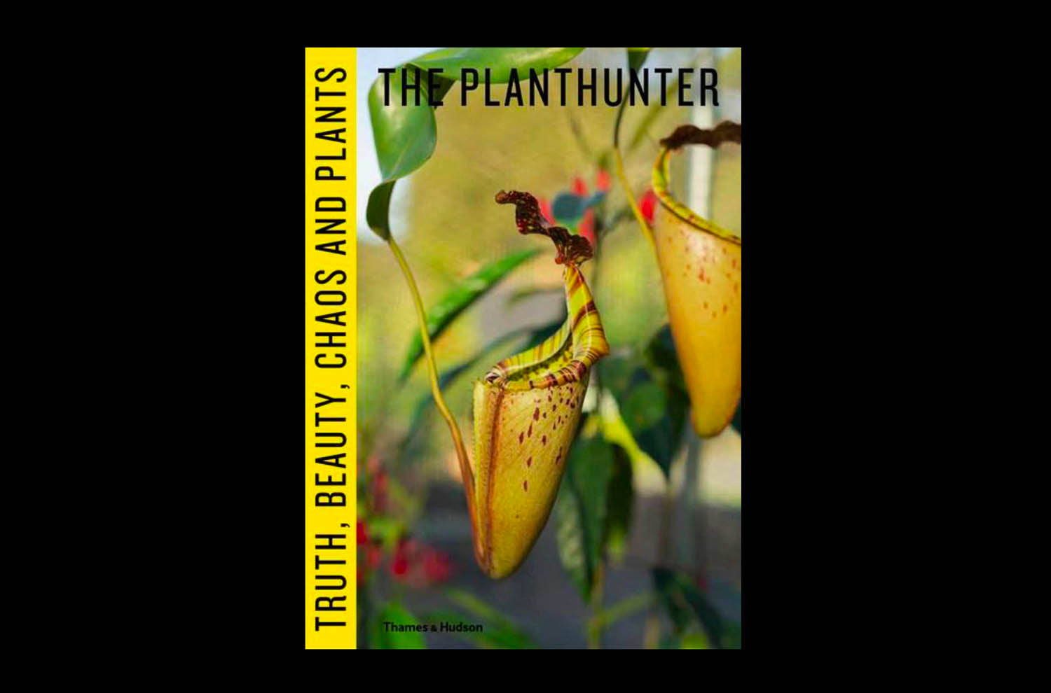 The Planthunter by Georgina Reid