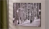 LED Lighted Canvas Print - Forest