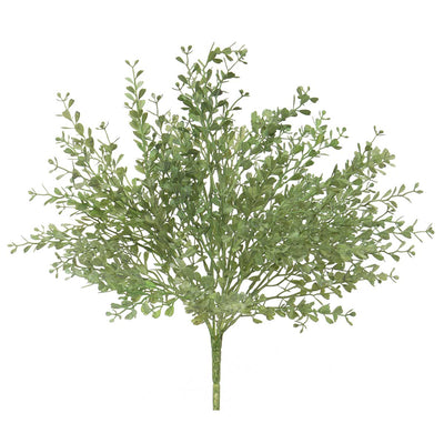 Mini Frosted Boxwood Bush 13