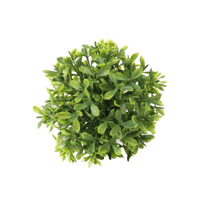 Mini Boxwood Ball 4