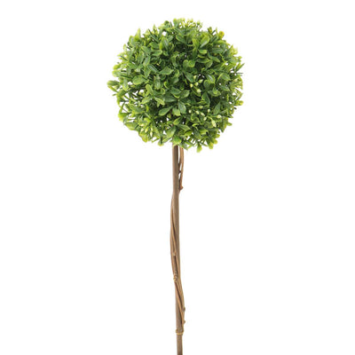 Mini Boxwood Topiary 5