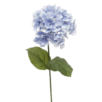 French Blue Hydrangea- Periwinkle