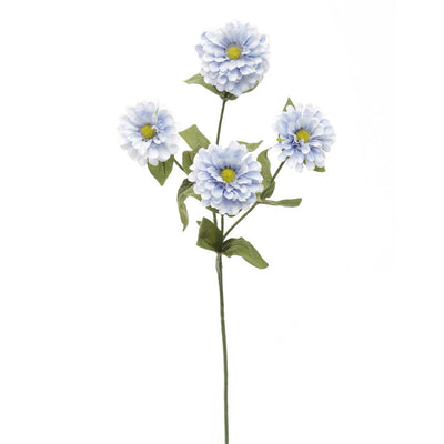 French Blue Zinnia - Periwinkle