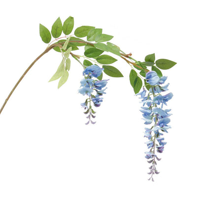 Wisteria Branch- Blue