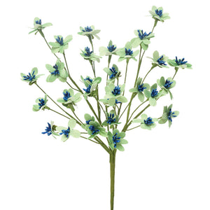 DAINTY DAISY BUSH - Blue