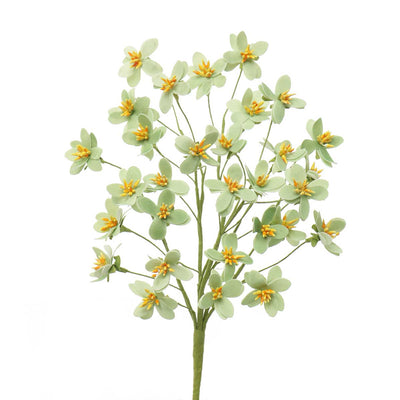 DAINTY DAISY BUSH - Yellow