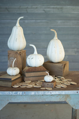 RECYCLED IRON PUMPKINS - DISTRESSED WHITE