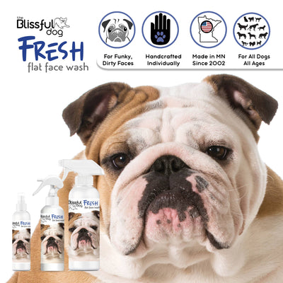 4 oz Fresh Flat Face Wash | Flat & Wrinkle Dog Faces