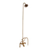 Barclay Products Tub/Shower Converto Unit – Elephant Spout with Handshower Polished Bronze in White Background