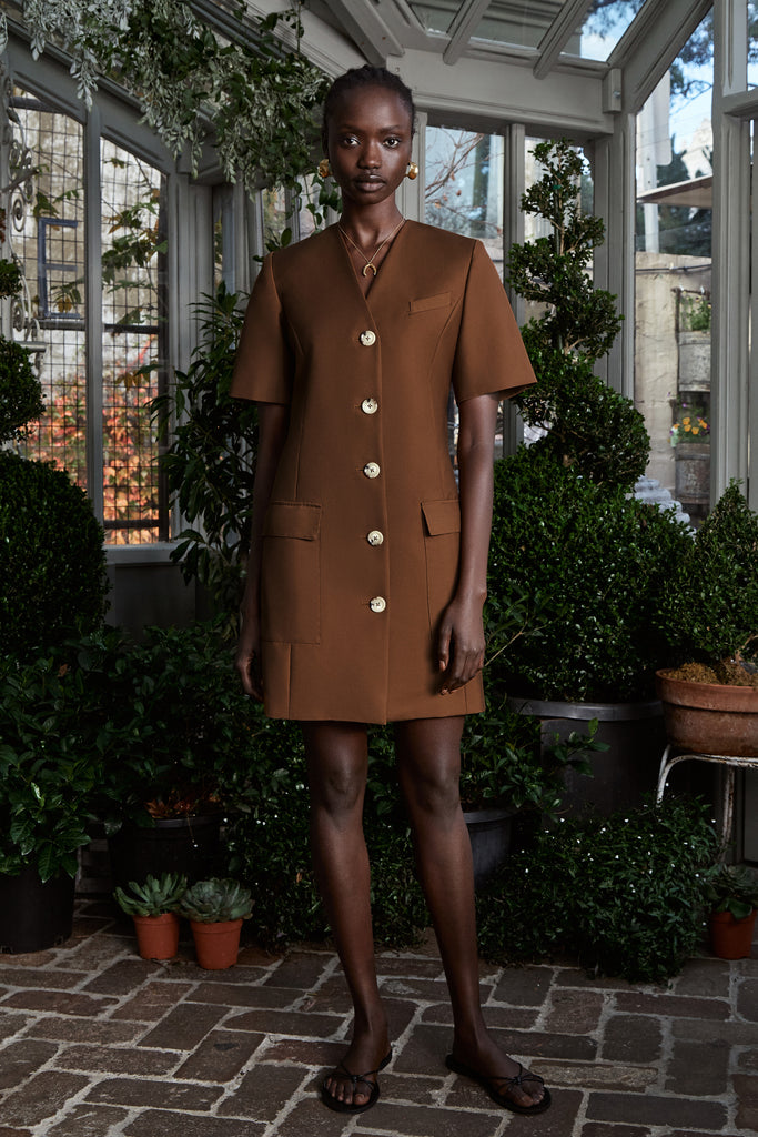 Portia Dress (CHOCOLATE)