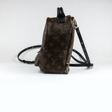 Louis Vuitton Monogram Brown Palm Springs Backpack Mini