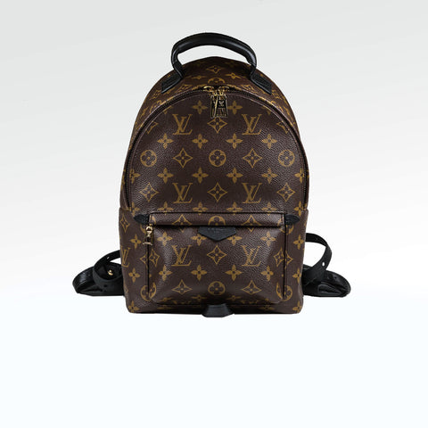 LV Palm Springs Backpack PM Monogram Brown