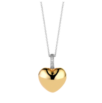Golden Heart Necklace with Zircon TS