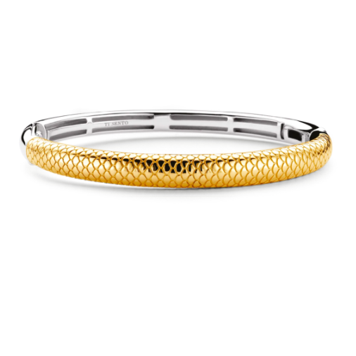 Golden Snake Skin Bangle Bracelet TS