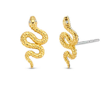 Snake Stud Earrings with Zircon TS