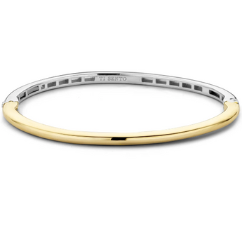 Golden Silver Bangle Bracelet TS