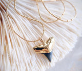 Electroplated Tip Real Shark Tooth