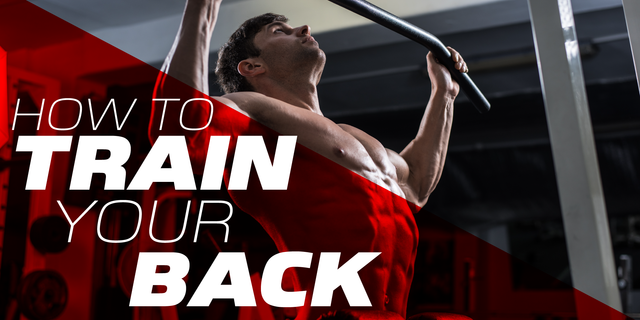 Back to Basics | A Workout to Supersize your Back Muscles