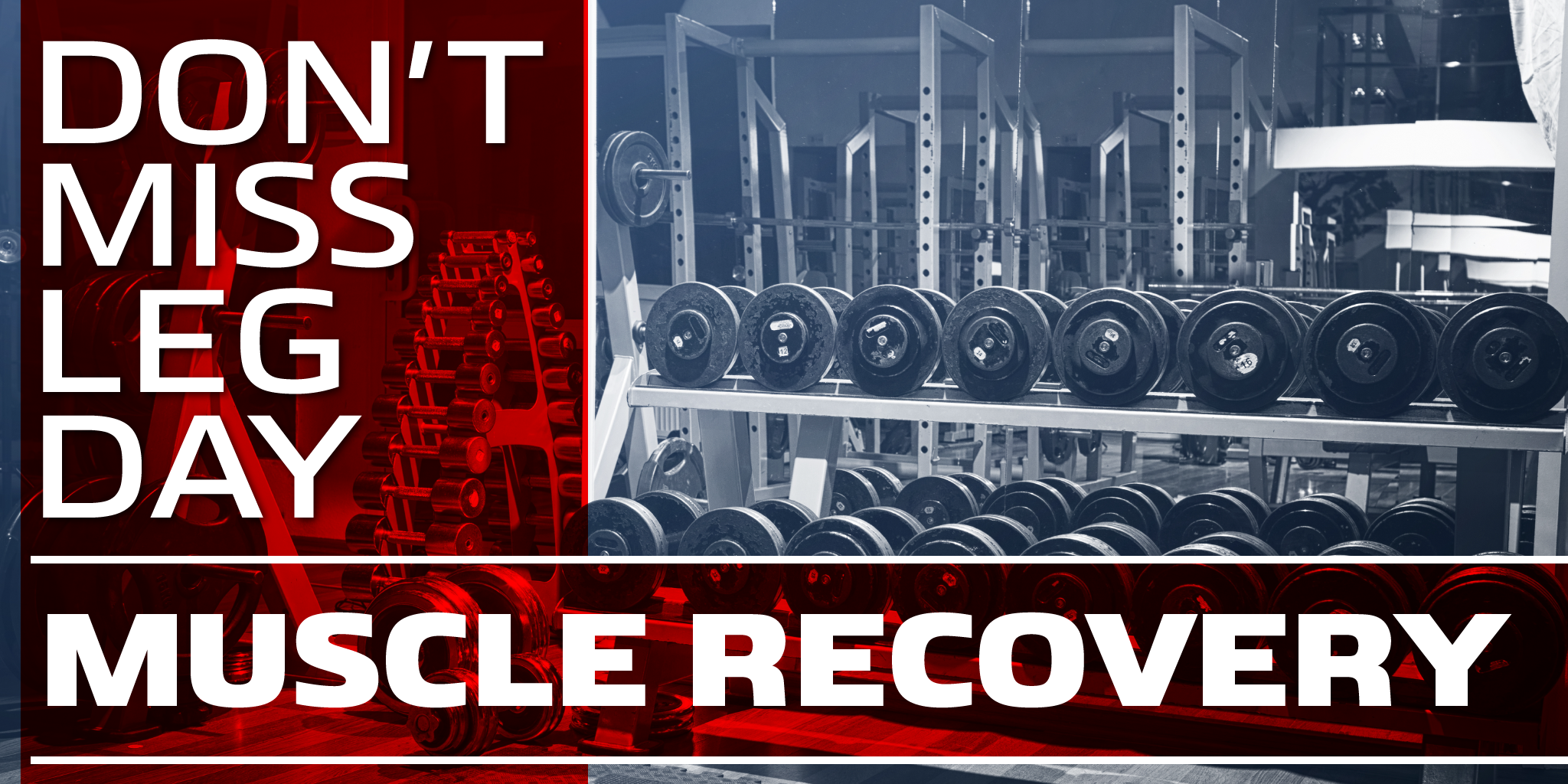 Muscle Growth Begins and Ends with Recovery