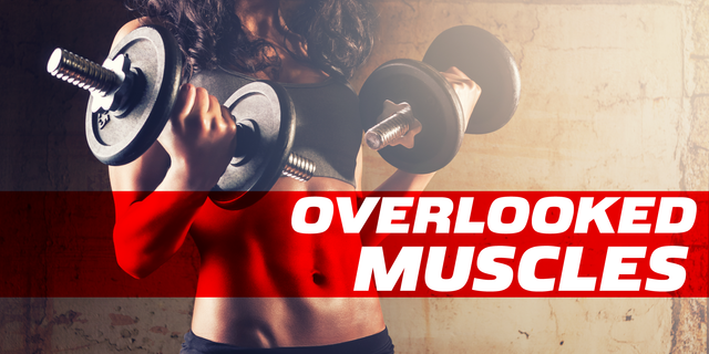 WOMEN | Frequently Overlooked Muscles