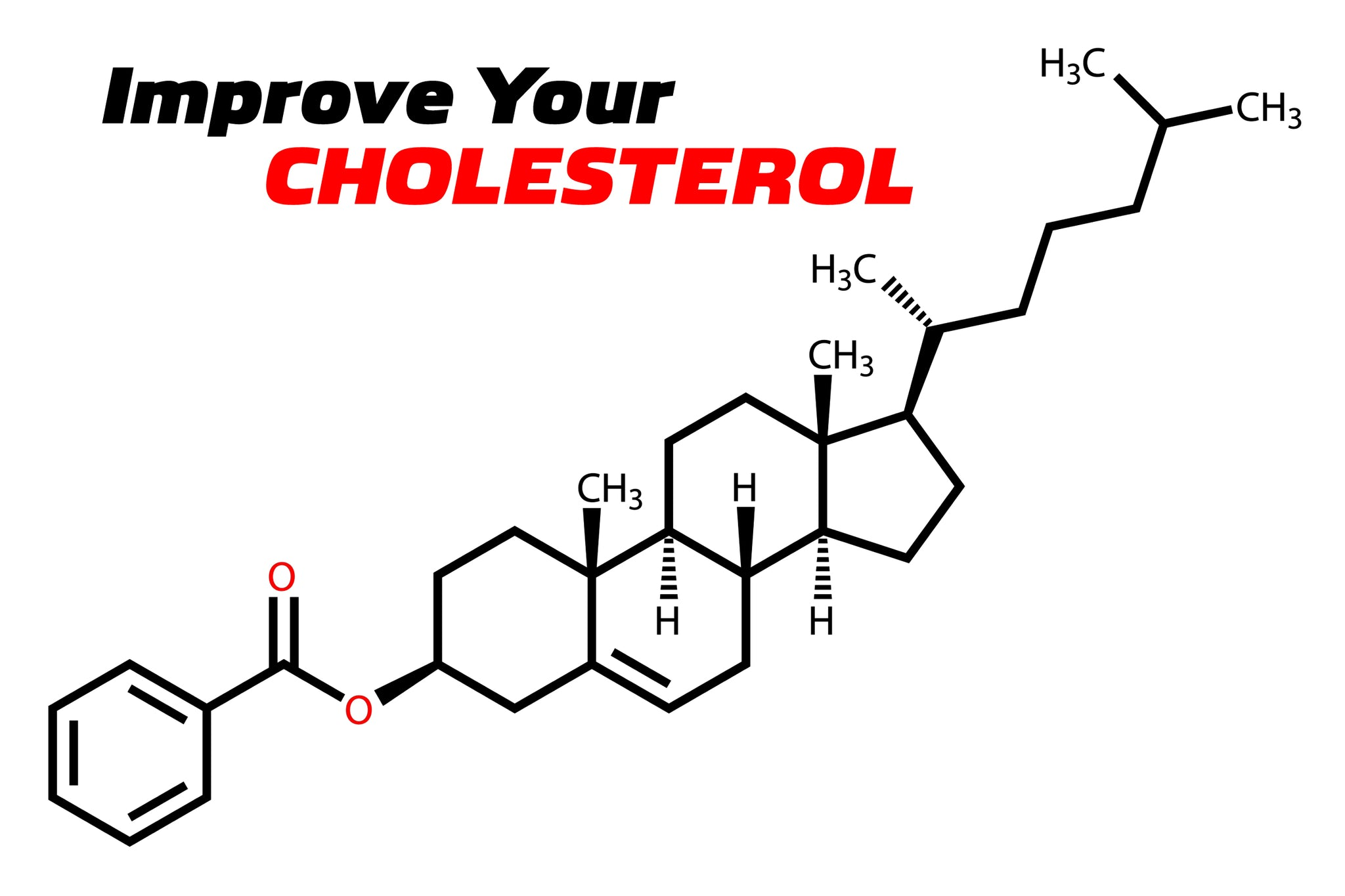 How To Take Control of Your Cholesterol